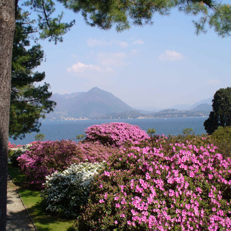 View over Lake Maggiore from destination wedding location Baveno