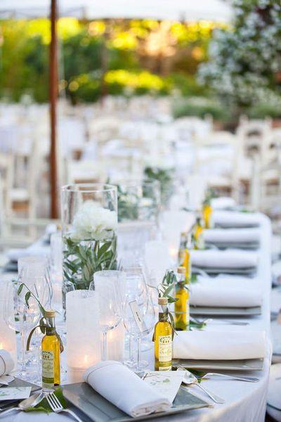 olive branches in vase